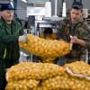 «АФГ НациональНН» на100% обеспечит Нижегородскую область картофелем