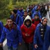 Эстонская милиция будет охранять словено-хорватскую границу