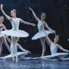 Встолице франции свосторгом встретили русский балет «Щелкунчик»