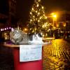 Рижские коты зовут туристов из РФ вгости— Нил Ушаков