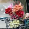 Латвия иЛитва помогут исключить реэкспорт голландских цветов в РФ