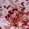 Массовое убийство шокировало жителей Тулы