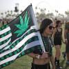 ВБерлине прошёл марш вподдержку легализации марихуаны