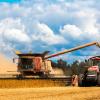 Ткачев пообещал увеличить ежегодный экспорт зерна до40 млн тонн