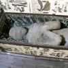 Ученые обнаружили необычную мумию изЕгипта, ставящую науку втупик