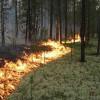 ВБурятии засутки найдено 13 новых лесных пожаров