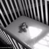 ВКопейске мужчина пытался убить собственного сына
