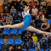 ВПензе пройдет Кубок Российской Федерации поспортивной гимнастике