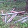 Вподмосковном лесу обнаружили 18 реактивных снарядов