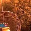 Житель Челябинска выращивал дома коноплю