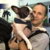 Пилот трансатлантического рейса Air Canada экстренно посадил самолёт ради безопасности собаки