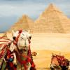 Египет готовится к новому сезону с российскими туристами