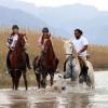 Конные туры на пляжах в Анталии приобретают популярность