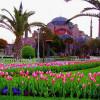 Турецкая весна ласкает глаз и не обжигает тело