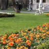Спешите поехать отдыхать в мае на курорты Турции