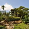 Рукотворный лес Тижука в Бразилии