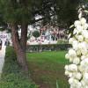 Герзе — маленький и полный очарования турецкий городок