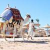 В РСТ поведали, когда туристов из России пустят в Египет