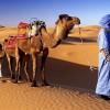 Марокко – солнце, которое никогда не зайдет