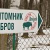 Идеальные места для семейного досуга в России