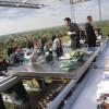 Ресторан «Обед в небесах» – место для настоящих любителей экстрима