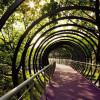 Мост «Slinky Springs To Fame Bridge», что напоминает игрушку-пружинку в Германии