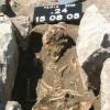 В легендарной Трое учеными найдена смертельно опасная древняя инфекция