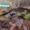 Оригинальные разноцветные озера на вулкане Келимуту