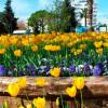 Весна в Анталии, что делать русскому туристу?