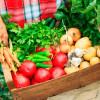 29-30 апреля в Турции стартует вегетарианский фестиваль