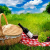Опасности, о которых нужно знать во время пикника