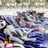 Пляжи для собак начинают массово открывать в Испании
