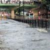 Летний шторм наводняет дороги и валит деревья в Стамбуле