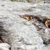 Учёные выяснили причины появления пламени в огненной горе Янарташ