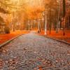 Где насладиться осенью в Турции?