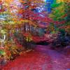 Каздаглары в Турции, представляя мифы на протяжении веков, приветствует туристов своими природными чудесами