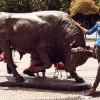 Магнит для туристов —154-летняя статуя боевого быка в Кадыкёй Стамбула может продолжить свое путешествие дальше