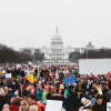Вашингтон предлагает новый «протестный туризм» с огромным бронированием гостиниц