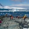 Антарктический туризм растет