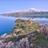 Чем заняться в городе Ван на востоке Турции?