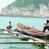 В Таиланде произошла авария на воде: 8 туристов ранены, 2 пропали без вести