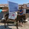 «Ослы-аккумуляторы» – новая достопримечательность Турции