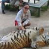 Казань будет привлекать туристов контактным зоопарком с хищными животными
