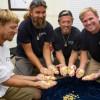 Американские дайверы обнаружили у берегов Флориды клад монет, стоимостью $4.5 млн