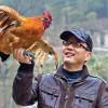 Роспотребнадзор напомнил туристам об опасности птичьего гриппа