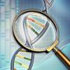 Томские учёные могут по анализу ДНК определить место рождения человека