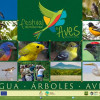 Первый Международный фестиваль птиц в Никарагуа привлёк массу туристов