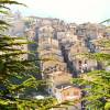 Недвижимость в Амбруццо