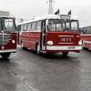 Стамбул выпускает на улицы раритетные автобусы