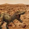 Curiosity нашел на Марсе скелет